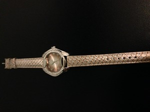 Ladies Fashion Watch rental Dallas-Ft. Worth, TX