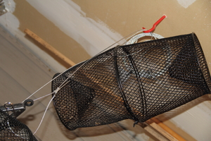 Minnow Trap  rental Traverse City-Cadillac, MI