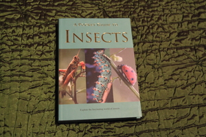 A Pocket Guide To Insects Book rental Traverse City-Cadillac, MI