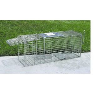 Animal Trap Medium  32 in. x 15 in. x 10 in. rental San Antonio, TX
