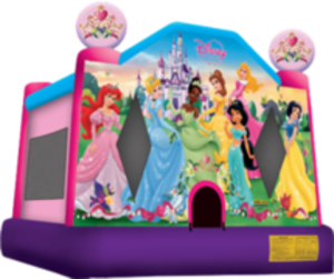 Bounce House - Disney Princess rental Austin, TX
