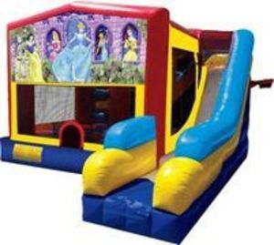 Bounce House Combo with Disney Princess Panel rental Austin, TX