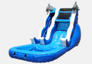 Dolphin Encounter Water Slide rental Austin, TX