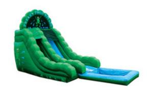 16ft. Frog Water Slide rental Austin, TX