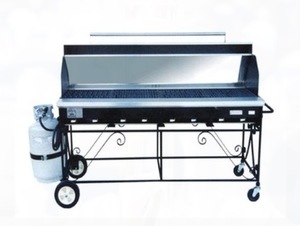 Propane Grill with Hood rental Austin, TX