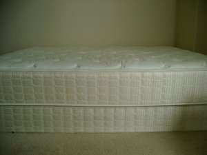 Serta (Antiqua Plush) Queen mattress rental Minneapolis-St. Paul, MN