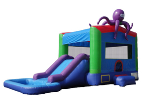 Octopus Wet/Dry Slide rental Austin, TX