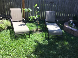 Folding chairs rental Houston, TX