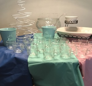 Party Hosting Package rental Dallas-Ft. Worth, TX