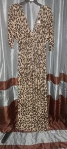 Plus Size Chiffon Maxi Dress rental Philadelphia, PA