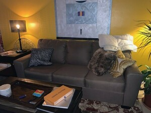 Couch for Rent  rental Miami-Ft. Lauderdale, FL