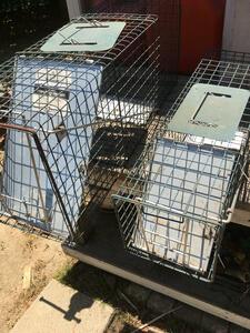 Havahart traps rental Los Angeles, CA