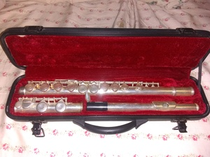 Flute rental Minneapolis-St. Paul, MN