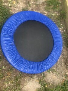 Mini Trampoline, great condition! rental Austin, TX