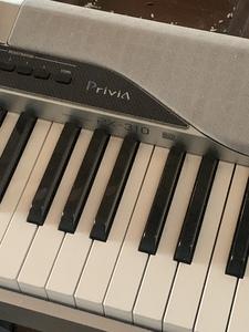 Casio Priva PX-310 Digital Piano rental Miami-Ft. Lauderdale, FL