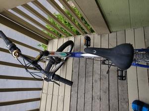 Blue Children's Bike rental Seattle-Tacoma, WA