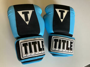 12oz Boxing Gloves rental Washington, DC (Hagerstown, MD)