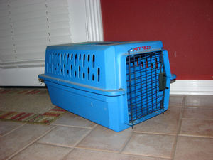 Portable pet carrier (small) rental Austin, TX