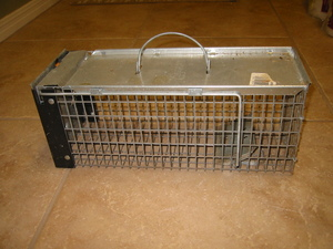 Small live animal trap - for squirrels, rabbits rental Austin, TX