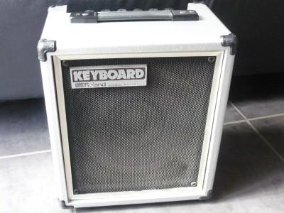 Loanables Roland Keyboard Or Guitar Amplifier Rental